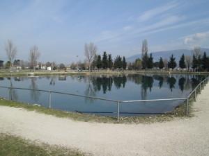 lago clitunno banco alimentare